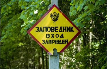Медведев: заповедники и нацпарки должны быть открытыми для туристов