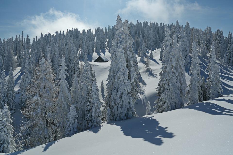 Каринтия. Снег