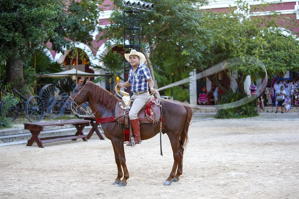 7 ярких примеров самобытной культуры Мексики. Всадник.Лассо