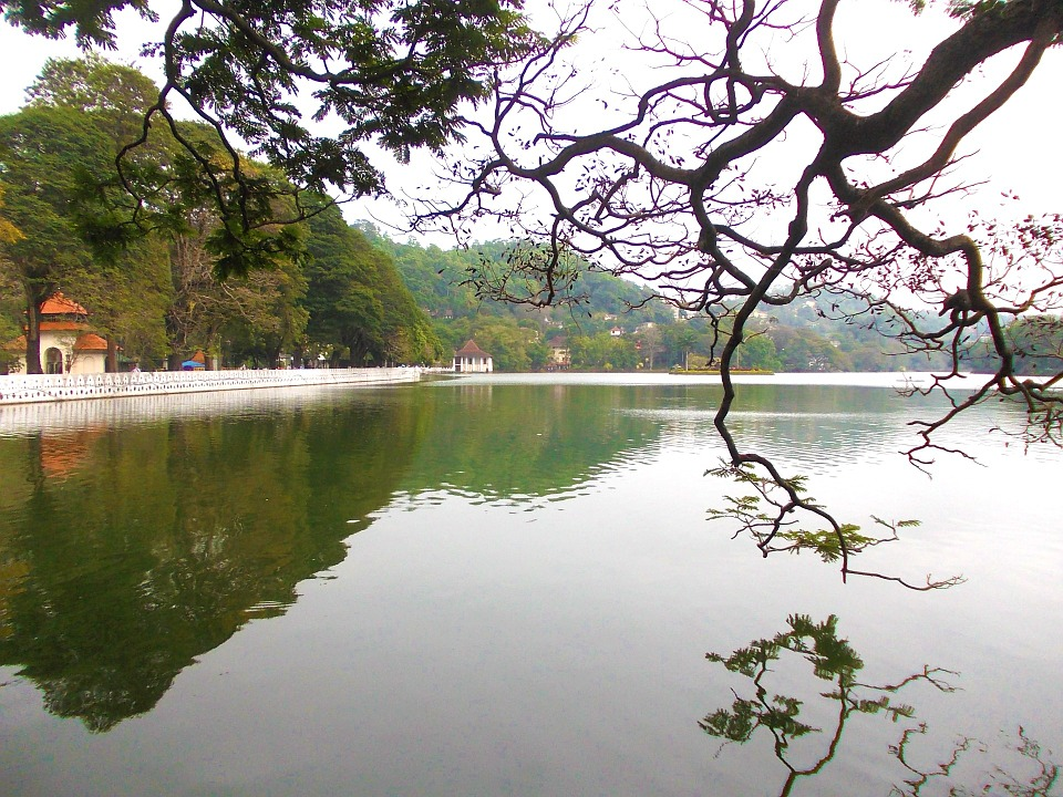 Шри-Ланка.Канди1