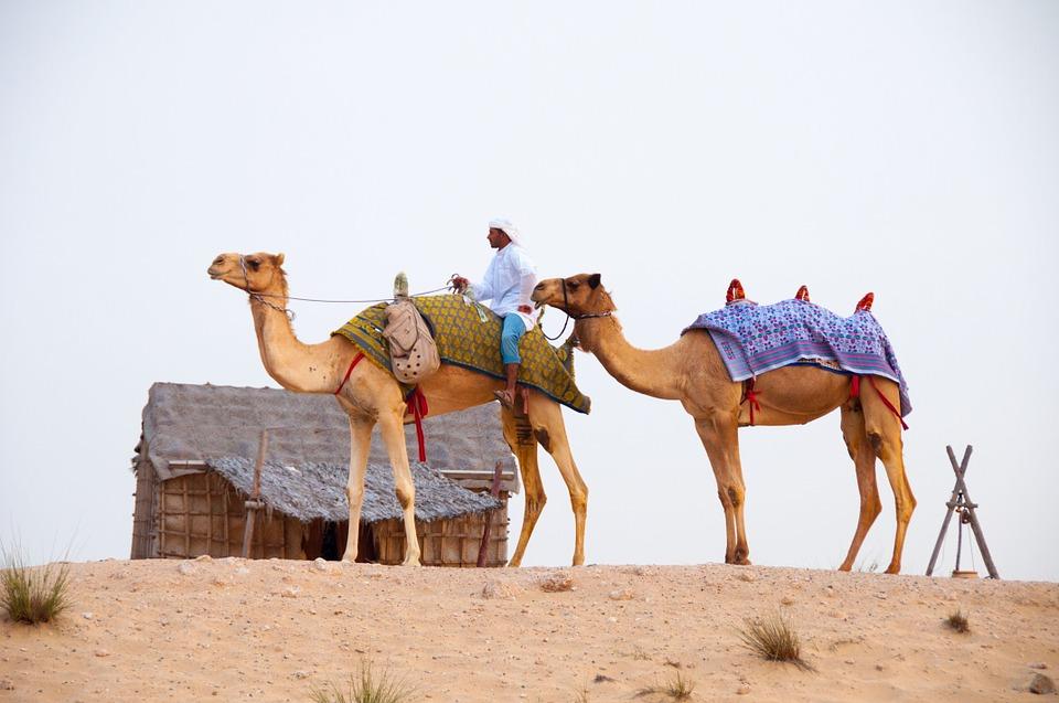 Дубай. Караванинг
