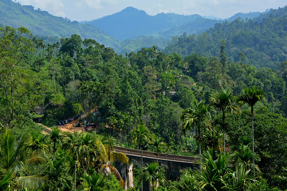 Шри-Ланка. Природа