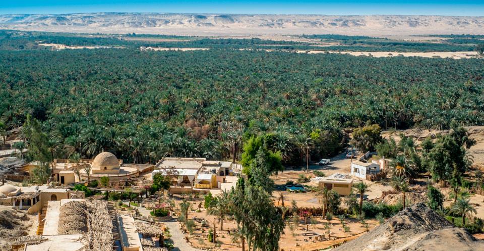 Египет. Оазис Эль-Файюм