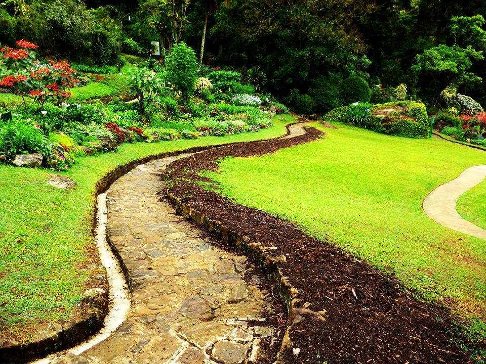 Шри-Ланка. Перадении. Сад